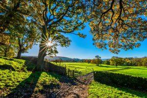 vie heureuse à la campagne