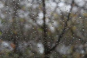 pluie ou larme